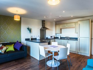 Luxurious 2 bed apartment - 2 mins to train/bus station - Slough vacation rentals