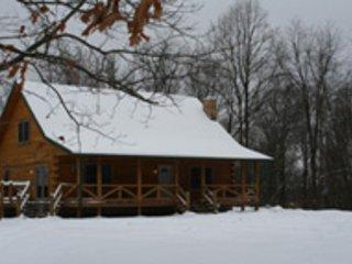 Cozy 3 bedroom McArthur Cabin with A/C - McArthur vacation rentals