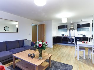 Three Bedroom Serviced Apartment in Vizion - Milton Keynes vacation rentals