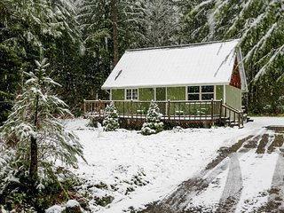 Lovely dog-friendly mountain cabin w/private hot tub! Just 400 feet to river! - Rhododendron vacation rentals