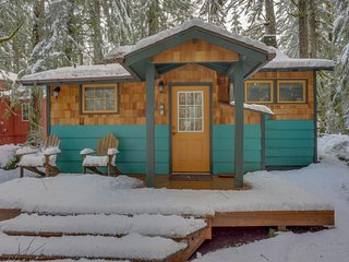 Modern, cozy, dog-friendly mountain retreat w/private hot tub & central location - Rhododendron vacation rentals