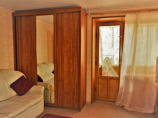 Just what you want apartment + transfer - Petropavlovsk-Kamchatskiy vacation rentals