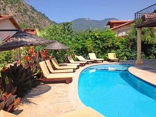 Spacious Turkish Villa with pool - Ortaca vacation rentals