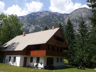 2 bedroom Apartment with Internet Access in Bohinjsko Jezero - Bohinjsko Jezero vacation rentals