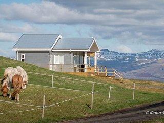 Cozy 1 bedroom House in Stykkisholmur with Internet Access - Stykkisholmur vacation rentals