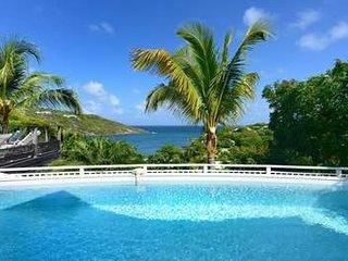 Modern 3 Bedroom Villa with Ocean View in Marigot - Marigot vacation rentals