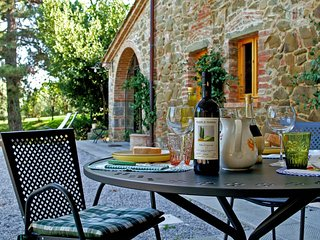 Villa Ceppeto Il Fienile - Torricella vacation rentals
