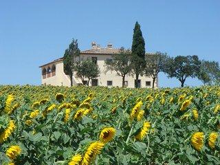 Villa Capezzine La Limonaia - Cignano vacation rentals