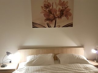 Lovely and Cozy apartment in Pristina - Pristina vacation rentals