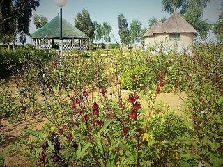 Campement touristique associatif La Palangrotte - Ndangane vacation rentals