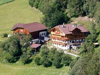 Gedrarzerhof - Urlaub auf dem Bauernhof - Luson vacation rentals
