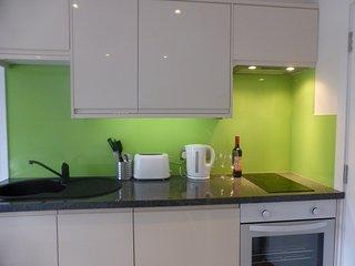 Bristol Central Apartment - Bristol vacation rentals
