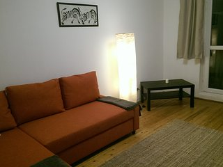 Nice 2 bedroom Apartment in Medias - Medias vacation rentals