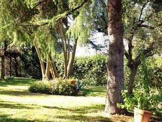 Il Casaletto di Luisa near Rome - Marino vacation rentals