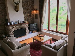 Deluxe Counrty House Dimitsana - Dhimitsana vacation rentals
