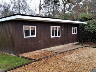 3 bedroom Cabin with Internet Access in Finchhampstead - Finchhampstead vacation rentals