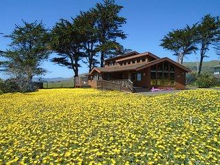 MINUTES TO PORTUGUESE BEACH - HANDICAP ACCESSIBLE - Bodega Bay vacation rentals