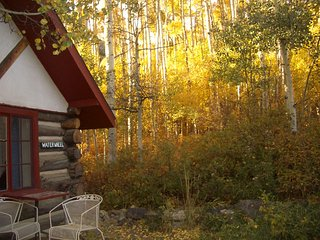 Waterwheel Cabin at Mt Elbert Lodge - Twin Lakes vacation rentals
