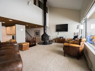 Mt. CB - Great View, Great Space - Crested Butte vacation rentals
