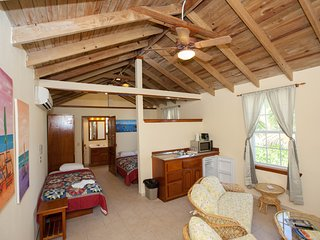 Fun in the Sun - Private Beach Resort Casita with 3 Beds - San Pedro vacation rentals