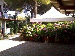 Ampio appartamento al I piano in villa a 450 mt dal mare - Lacona - Isola d'Elba - Lacona vacation rentals