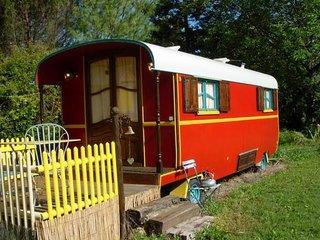 Roulotte , gîte et chambre d'hôtes entre cabane et maison - Plats vacation rentals