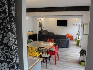 Maison tout confort hypercentre Reims terrasse parking 10 personnes - Reims vacation rentals