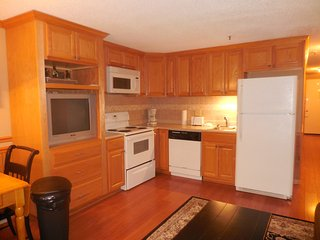 SKI IN/OUT 1 Bedroom-Center Village - Snowshoe vacation rentals