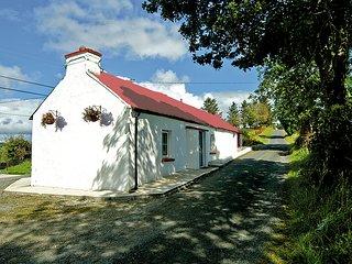 Nice 2 bedroom Cottage in Ballybofey - Ballybofey vacation rentals