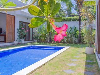PROMO villa Daria 3BR in the hearth of Seminyak - Kuta vacation rentals