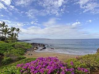 Nice 2 bedroom Condo in Makena - Makena vacation rentals