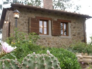 Romantic 1 bedroom Vacation Rental in Province of Arezzo - Province of Arezzo vacation rentals