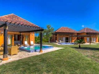 Radiant 3 Bedroom Villa in Cap Cana - Image 1 - Punta Cana - rentals
