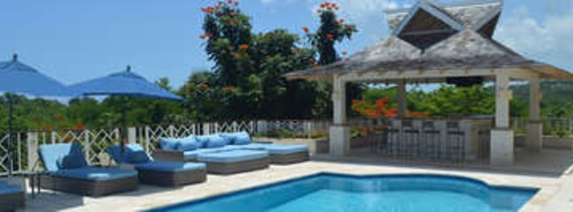 One of a Kind 10 Bedroom Villa at Tryall - Image 1 - Hope Well - rentals