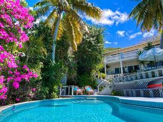 Tremendous 3 Bedroom Villa in Virgin Gorda - Virgin Gorda vacation rentals