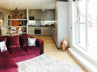 Brixton Penthouse with large Private Terrace - London vacation rentals