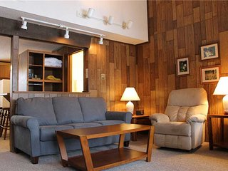 Located at Base of Powderhorn Mtn in the Western Upper Peninsula, A Trailside Condo with a Shared Hot Tub & Allows Dogs - Bessemer vacation rentals