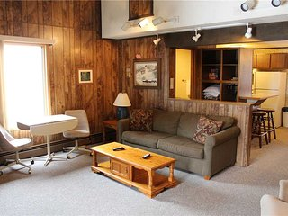 Located at Base of Powderhorn Mtn in the Western Upper Peninsula, A Convenient Trailside Condo with a Shared Hot Tub & Allows Dogs - Bessemer vacation rentals