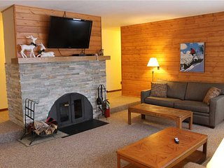 Located at Base of Powderhorn Mtn in the Western Upper Peninsula, A Pleasant Trailside Home with Hot Tub, Brick Fireplace & Allows Dogs - Bessemer vacation rentals