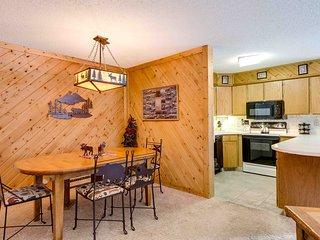 1 Bedroom, 2 Bathroom House in Breckenridge  (02B1) - Breckenridge vacation rentals