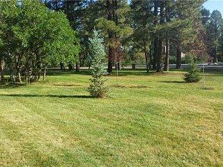 Four Season Colorado Villa ~ RA131761 - Pagosa Springs vacation rentals