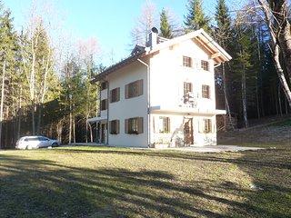 Appartamento per vacanze a Pieve di Cadore, 30 minuti da Cortina D'Ampezzo - Pieve di Cadore vacation rentals
