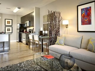 Ultra Hip, Modern & Luxurious APT DC - 2 Blocks to Union Station & The Capitol - Washington DC vacation rentals