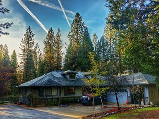 Spacious Home Nestled In The Forest On 5 Acres - Volcano vacation rentals