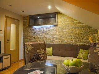 Romantic Zlatibor vacation Condo with Internet Access - Zlatibor vacation rentals