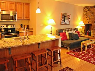Remodeled 2 bedroom Condo located in the Town of Dillon with covered parking - Dillon vacation rentals