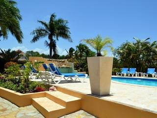 Bright Condo with Internet Access and Shared Outdoor Pool - Cabarete vacation rentals