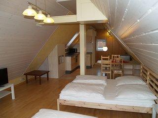 Berg Apartment nähe Messe/Flughafen Stuttgart - Leinfelden-Echterdingen vacation rentals