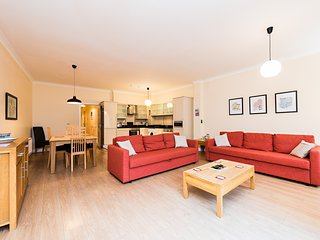 Luxury and bright 2BDRM in historical central Dublin with terrace - Dublin vacation rentals