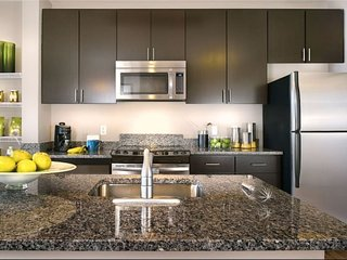 Upscale Urban Lifestyle in heart of DC -3 Blocks to Union Station & The Capitol - Washington DC vacation rentals
